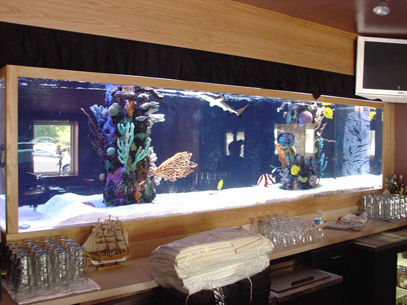 Restaurant Armco Aquariums Serving Philadelphia