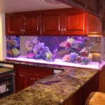 4 Beautiful Spots for Your Aquarium from New Jersey's Premiere Aquarium Builder