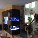fish tank builder New Jersey