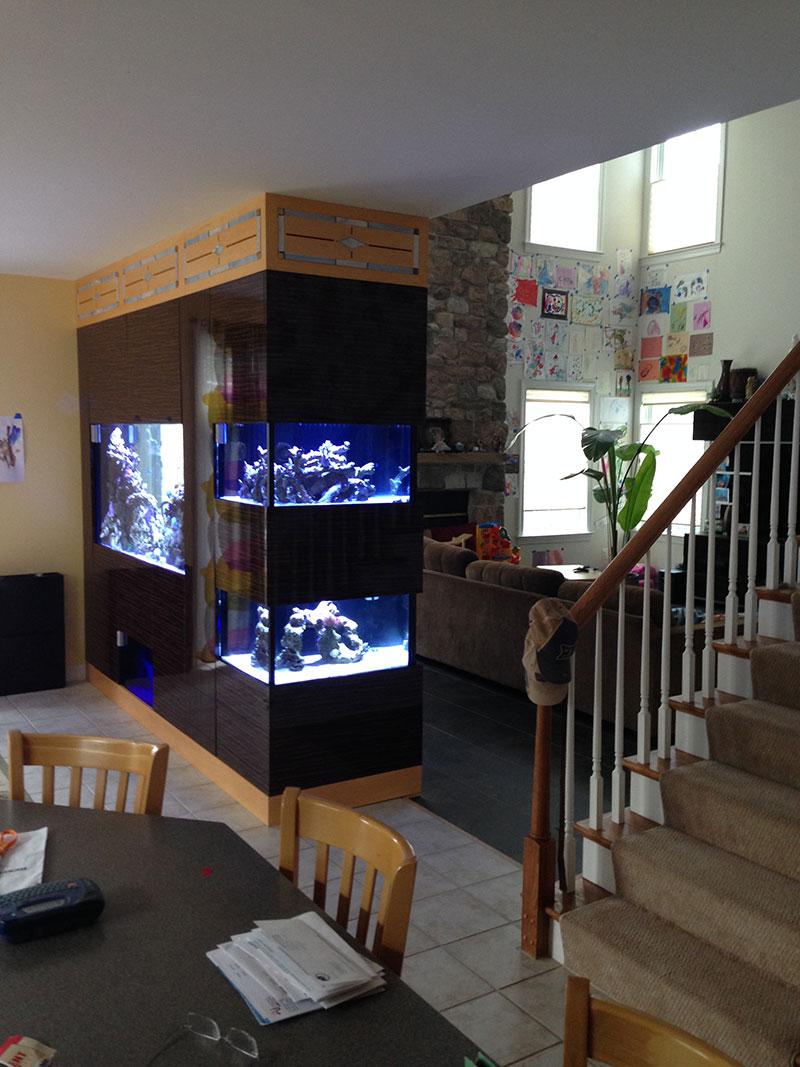 custom aquarium wilmington
